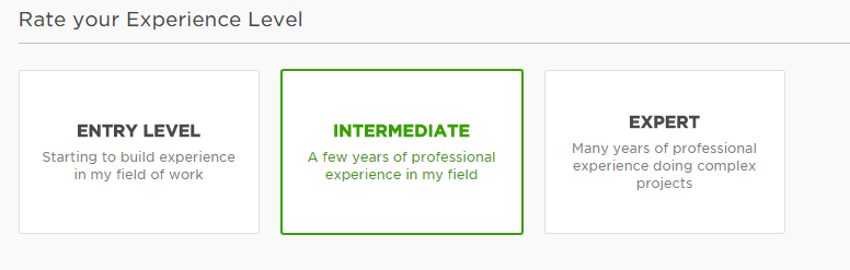 Freelancer Profile On Upwork