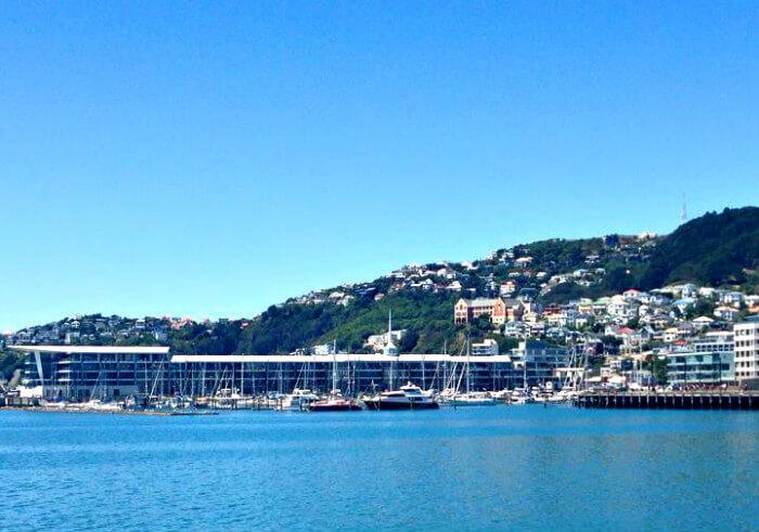 living in Wellington
